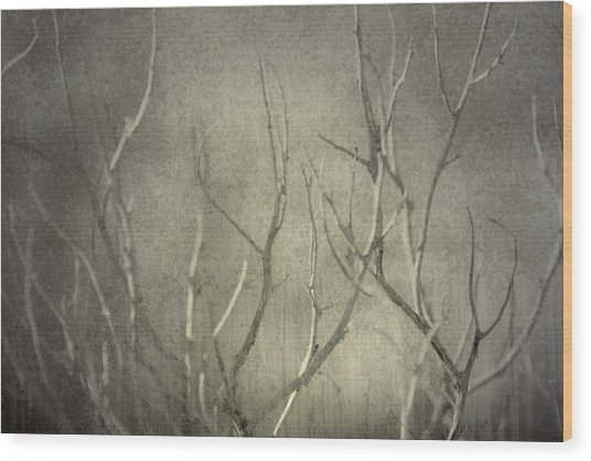Reticent Wood Print