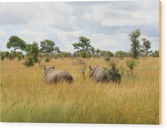 Rhino Pair Wood Print by Deborah Hall Barry