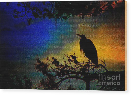 Richly Colored Night  Wood Print