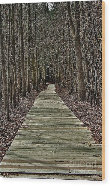Right Path Wood Print by Gregory Dragan