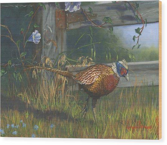 Ringneck Pheasant Wood Print by Jeff Brimley