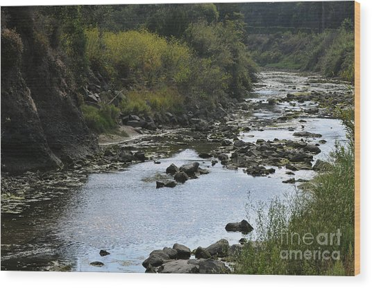 River At The Golf Course Laguna Wood Print by Nelly Marziale
