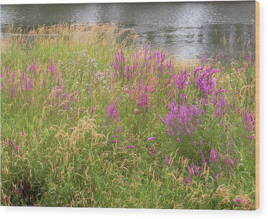 River Flowers Wood Print by Fred Russell