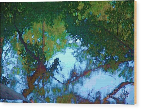 Riverbank Reflections2 Wood Print
