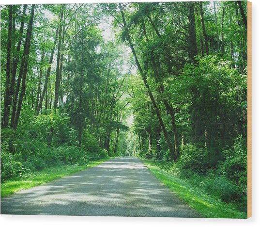 Road To La Push Wood Print