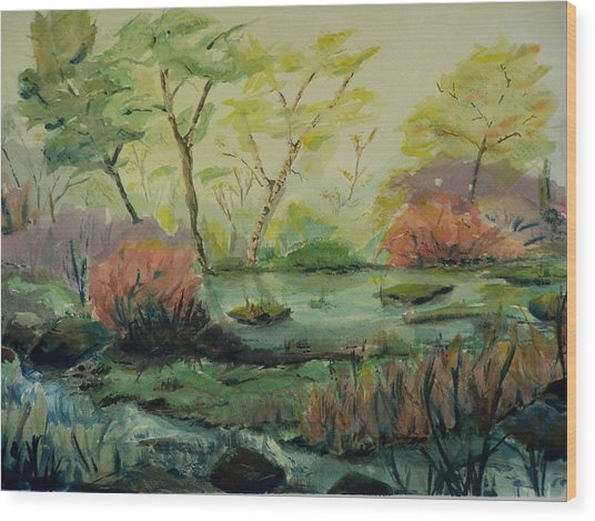 Roadside Pond Wood Print
