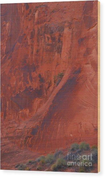 Rock Art Wood Print