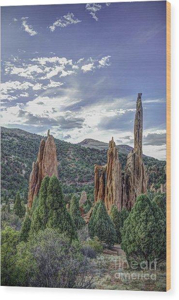 Rock Formation Garden Of The Gods Wood Print by David Waldrop