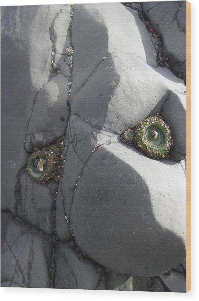 Rock Troll Wood Print