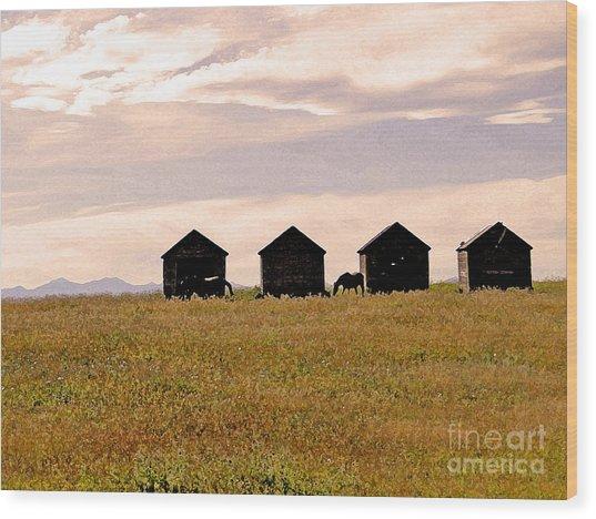 Rockies Horse Country Wood Print