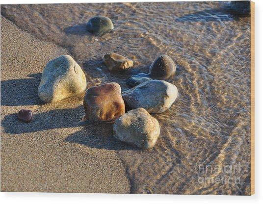 Rocky Beach  Wood Print by Ginger Harris