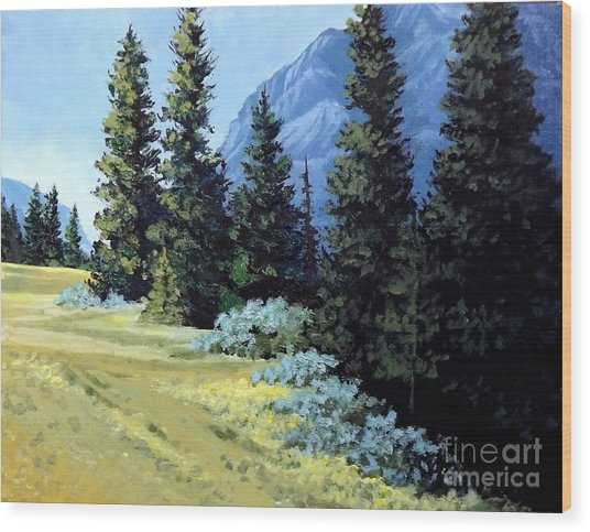 Rocky Mountain Meadow Wood Print
