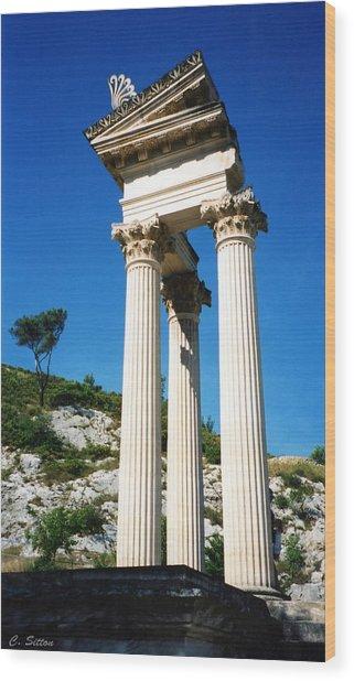 Roman Columns Of Glanum Wood Print