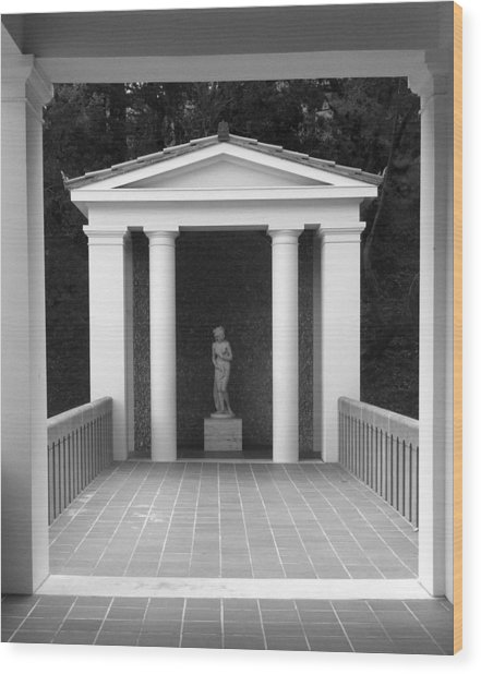 Roman Shrine  Wood Print by Paul Washington