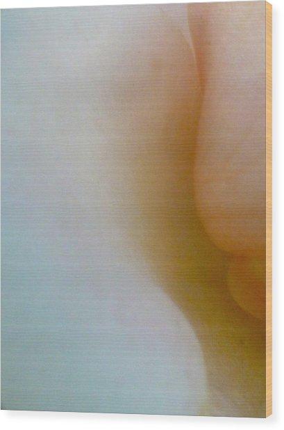 Rose Petals II Wood Print