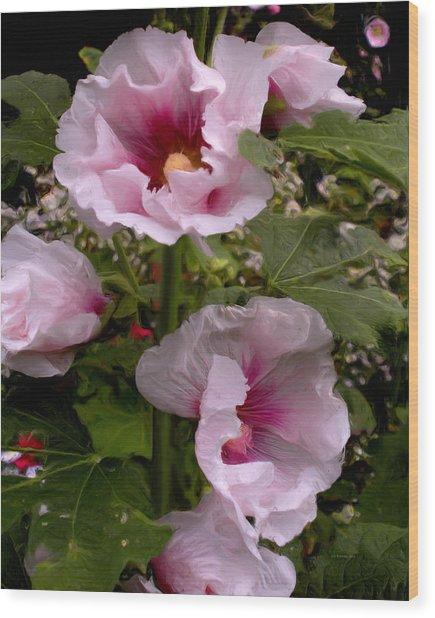 Rose Pink Hollyhocks Wood Print