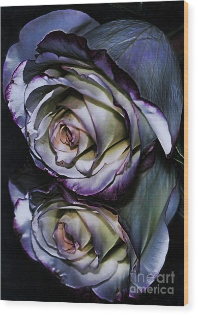 Rose Reflection 2 Wood Print by Marianne Troia