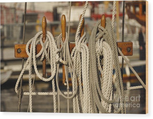 Row Of Ropes Wood Print by Camille Lyver