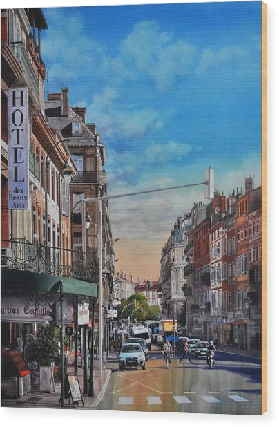 Rue De Metz In Toulouse Wood Print