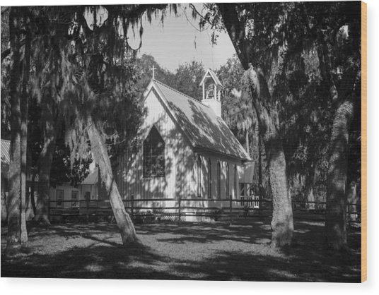Rural Congregation Wood Print