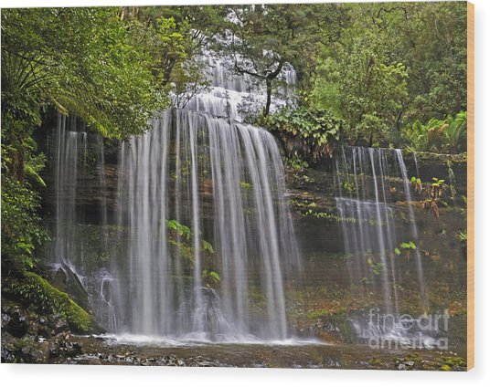 Russell Falls Wood Print by Raoul Madden
