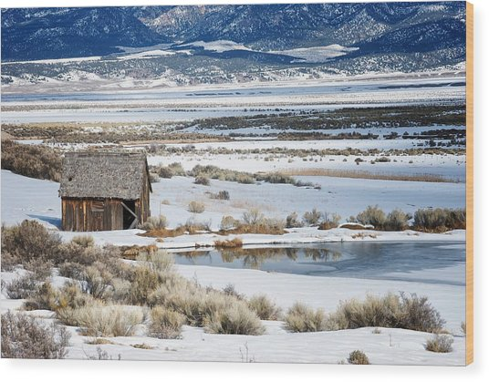 Rustic Barn In A Snowy Valley Next To A Pond Wood Print by C Thomas Willard