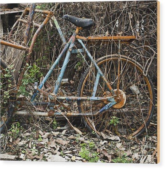 Rusty Wheel Of Bicycle Wood Print by Chavalit Kamolthamanon