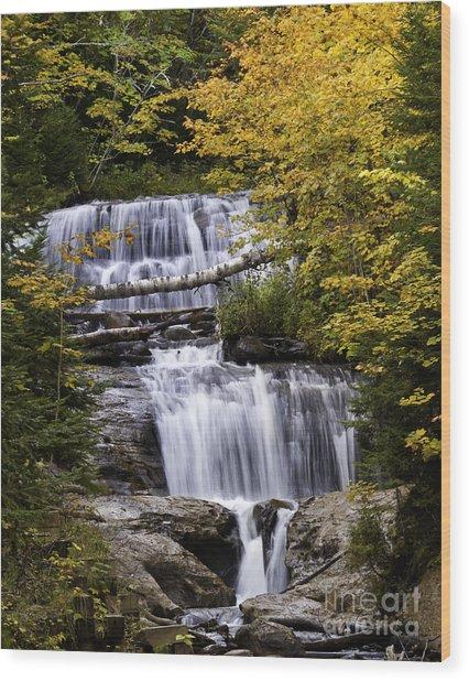 Sable Falls Wood Print