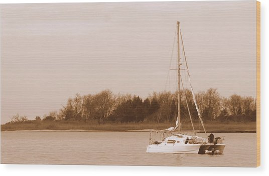 Sailboat On Chesapeake Wood Print