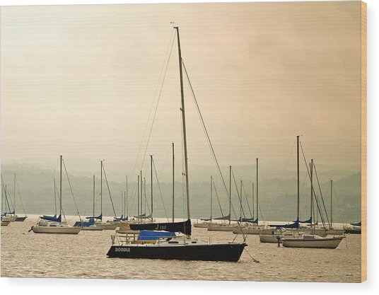 Sailboats Moored In The Harbor Wood Print