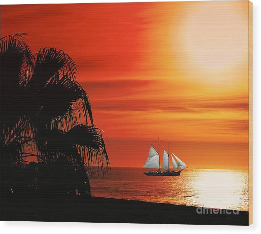 Sailing In Mexico Wood Print