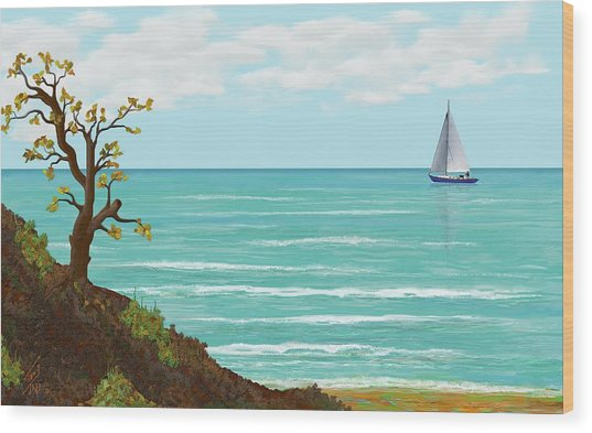Sailing Wood Print by Tony Rodriguez
