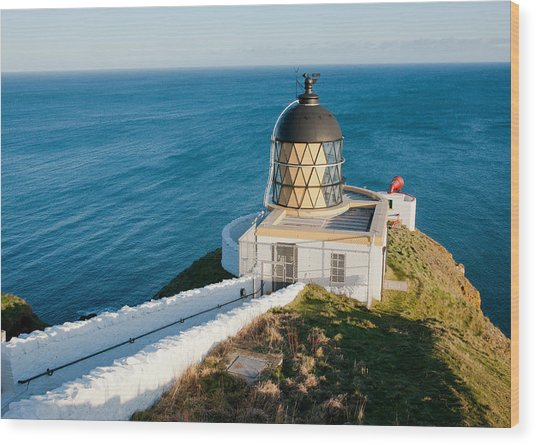 Saint Abb's Head Lighthouse And Foghorn Wood Print