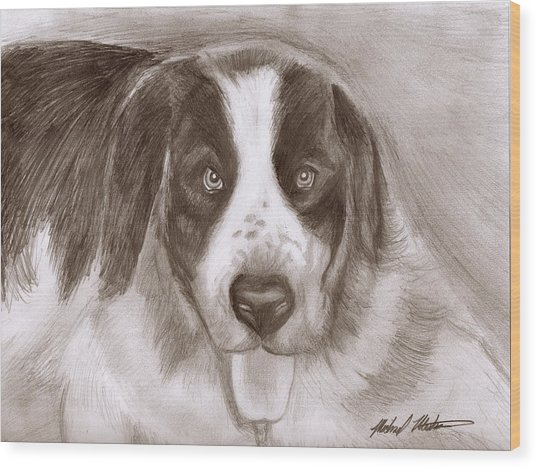 Saint Bernard Wood Print by Michael Mestas