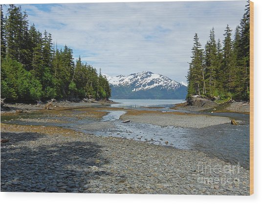 Salmon Run Lagoon Wood Print