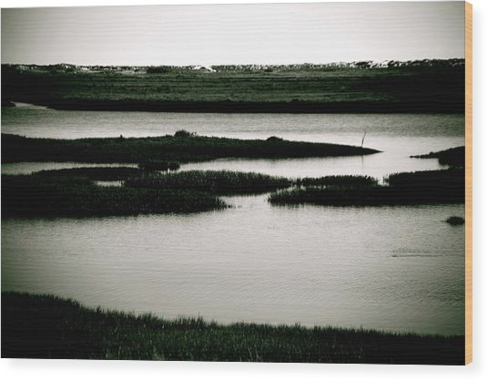 Salt Marsh Wood Print by Jez C Self