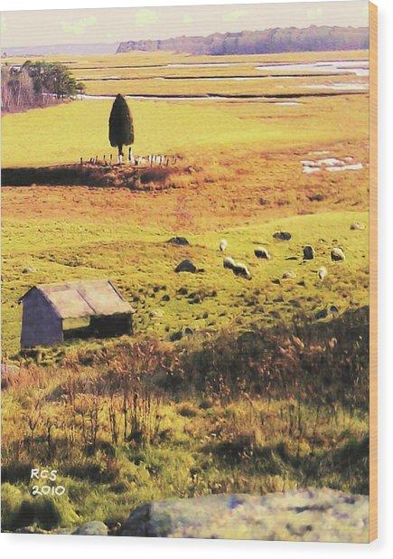 Salt Marsh Pasture Wood Print