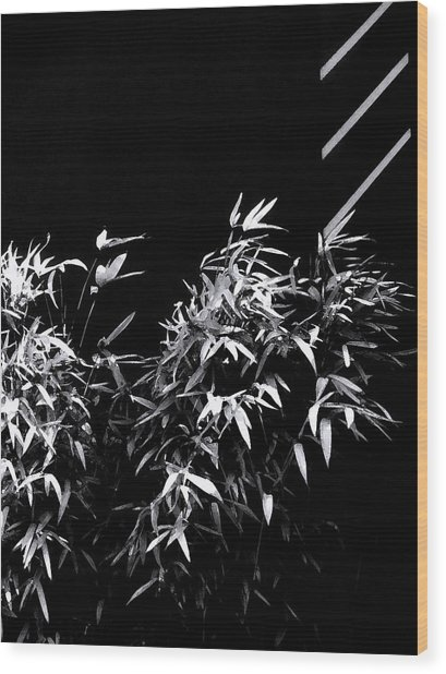 Samantha Jean Wood Print