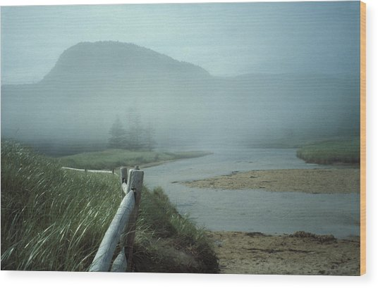 Sand Beach Fog Wood Print