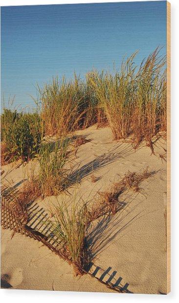 Sand Dune II - Jersey Shore Wood Print