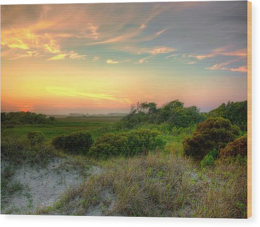 Sand Dunes And Beach Grass  Wood Print by Jenny Ellen Photography