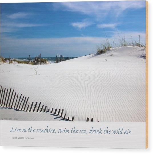Sand Dunes Dream 3 Wood Print