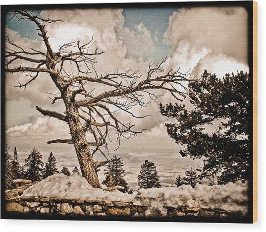 Albuquerque, New Mexico - Sandia Crest Wood Print