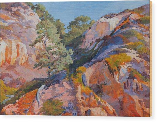 Sandstone Canyon At Torrey Pines Wood Print