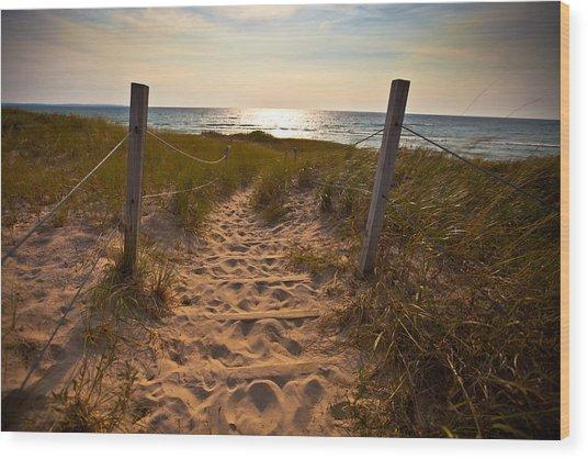 Sandswept Wood Print