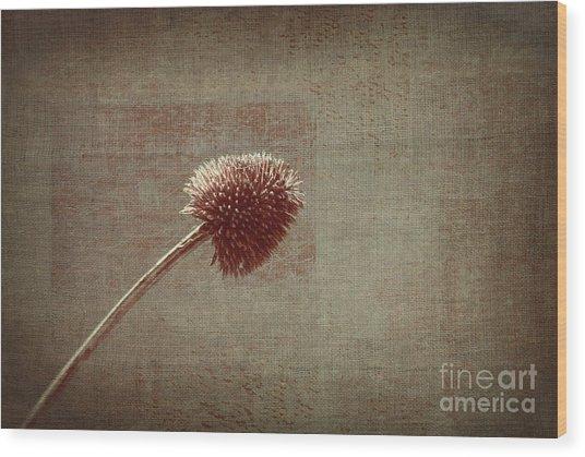 Sans Nom - S03p11t05 Wood Print