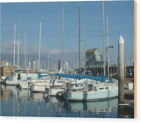 Santa Barbara Marina Wood Print by Linda Pope