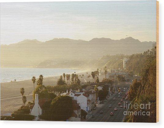 Santa Monica Beach Wood Print by Yulia Bekar