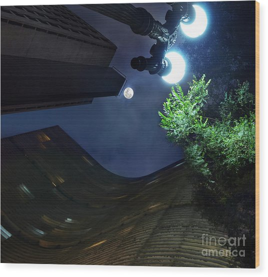 Copan Building And The Moonlight Wood Print