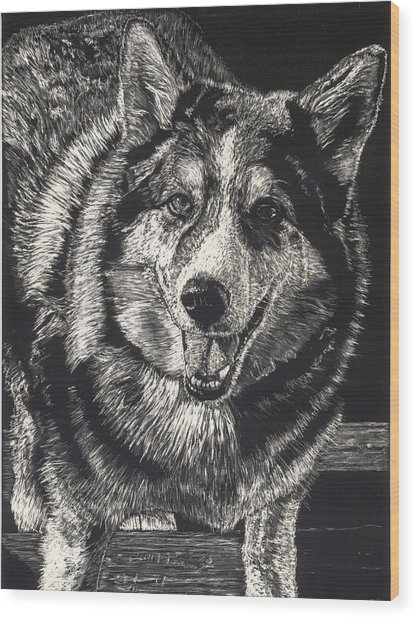 Sarge The Dog Wood Print by Robert Goudreau